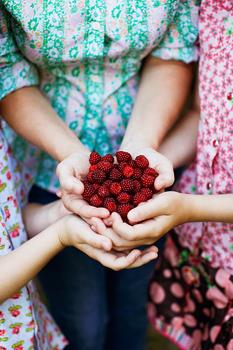 berries family